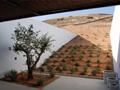 15个惊艳的内庭院景观设计